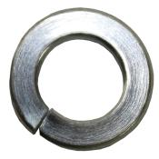 "Picture of Brinn Lock Washer - (5/16"")"